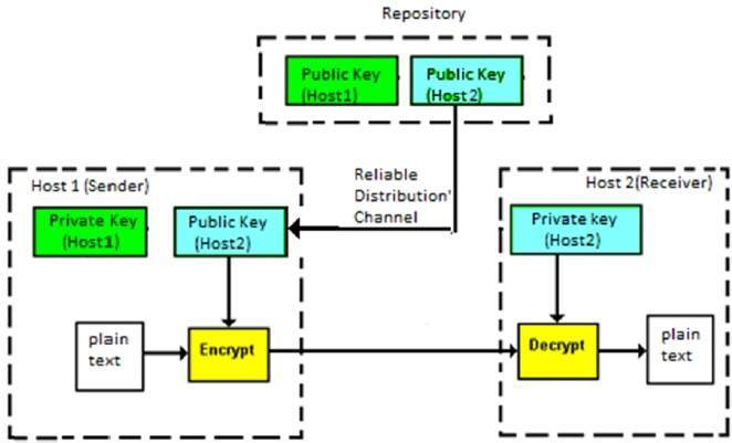 Unit i network security and cryptography ccuart Choice Image