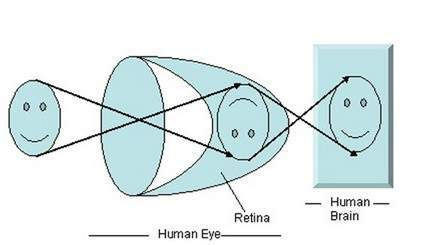 Eye image formation