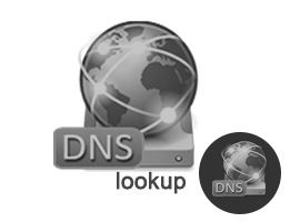 DNS Lookup for a Website
