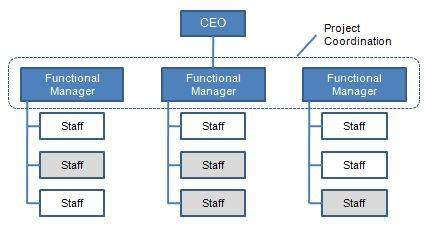 Organization Structures Part 1 - Functional Structure | Bill Gates ...