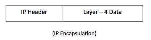 IP Encapsulation