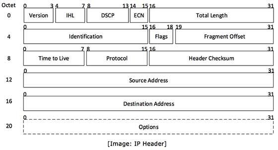IP header includes many relevant information including Version Number ...