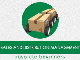 Sales and Distribution Management Tutorial