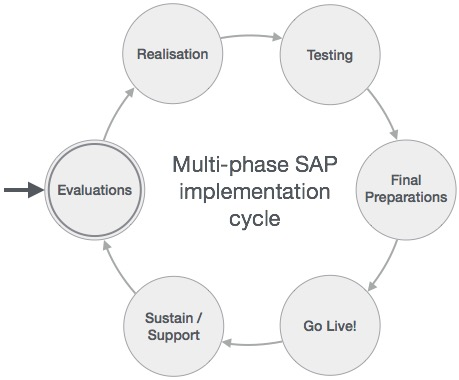 SAP Multiphase Project Lifecycle