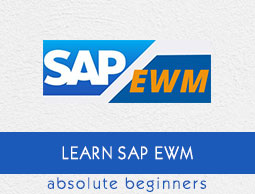 SAP EWM Tutorial