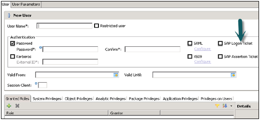 SAP Logon and Assertion Tickets