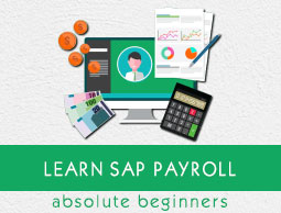 SAP Payroll Tutorial