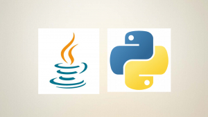 COMPLETE Python and Java Programming BOOTCAMP Image