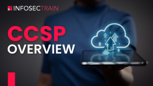 CCSP Overview Image