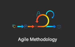 Agile Methodology Image