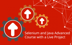 Selenium and Java Advanced Course with a Live Project Image