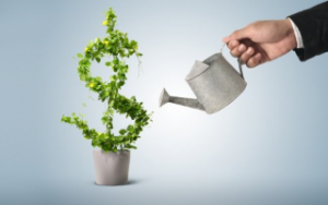 Financial and Operation Budgeting |Business Plan for growth Image