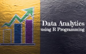 Data Analytics using R Programming Image