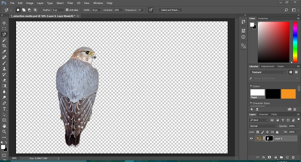 how to create background indesign