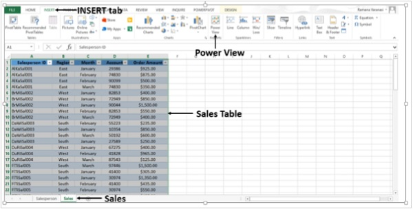 Sales Table Power View