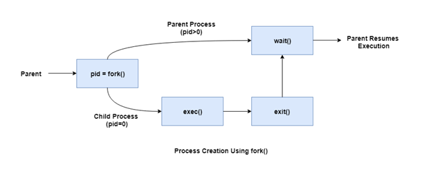 Process Creation using fork()