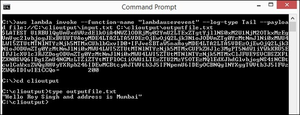 Custom Command Prompt