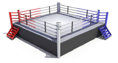 Boxing Playing Environment