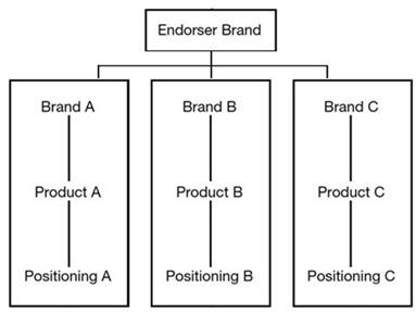 Endorser Brand Architecture