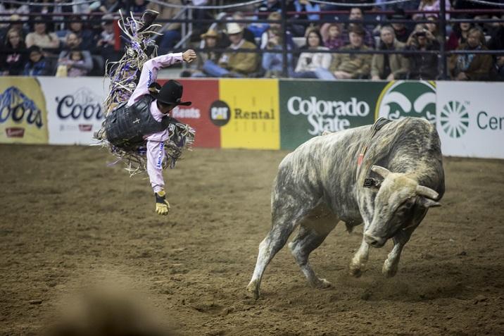 Bull Riding How To Ride Tutorialspoint