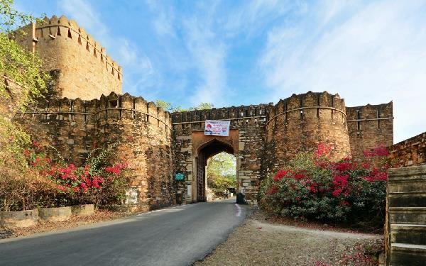 Image result for चित्तौड़गढ़ का किला
