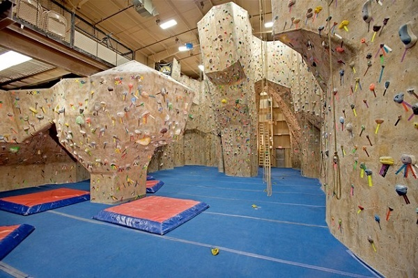 Competitive Climbing Environment