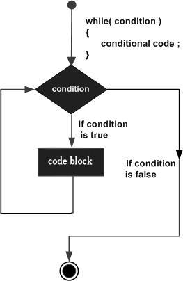 while loop in C