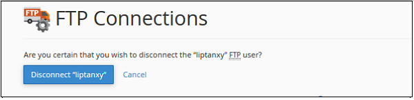 Disconnect FTP Connetions