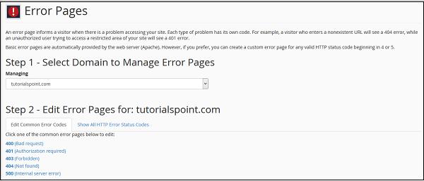 Error Page Manage