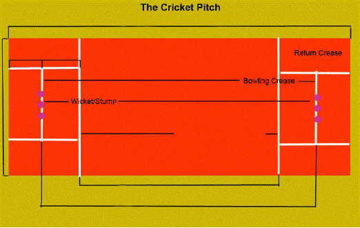 Cricket Field Dimensions