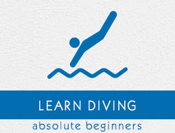 Diving Tutorial