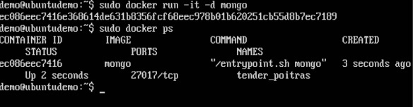 MongoDB Container