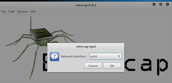 Ettercap Input