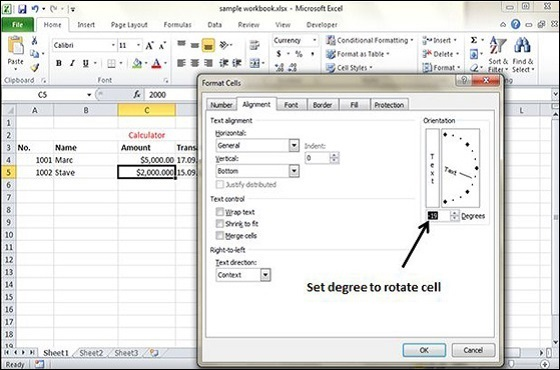 rotate cells in excel 2010