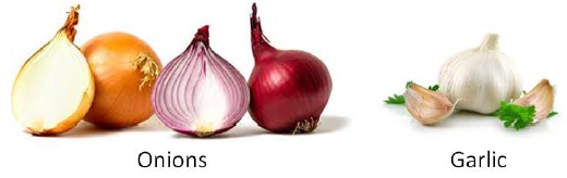 bulb onion production guide Onions are hard bulbs, in the allium family (consists of onions, scallions, leeks)  which have a distinct flavour they are excellent for use in.