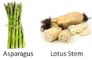 Stem Vegetables