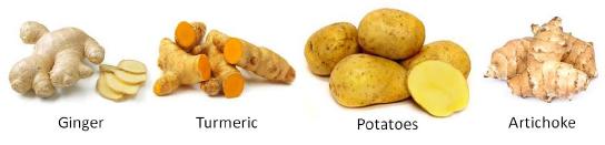 Tuber Vegetables