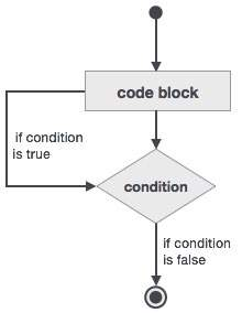 Fortran Do While Loop Construct