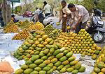 Mango City of Bengal