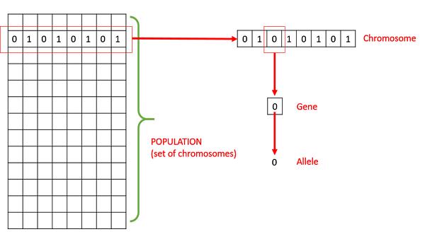Dna Flips And Swaps Scramble Genes >> Genetic Algorithms Quick Guide