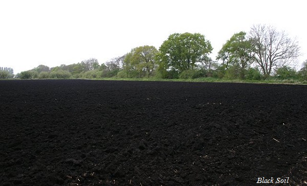 information on black soil Find information on various problems of black soil, disadvantages of black soil in india.