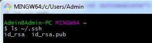 SSH Key Existing