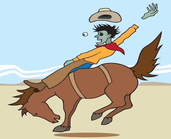 Horse Injury
