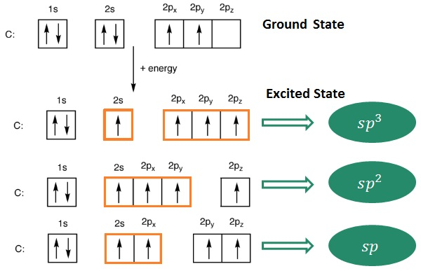 Organic Chemistry - Carbon Hybridization