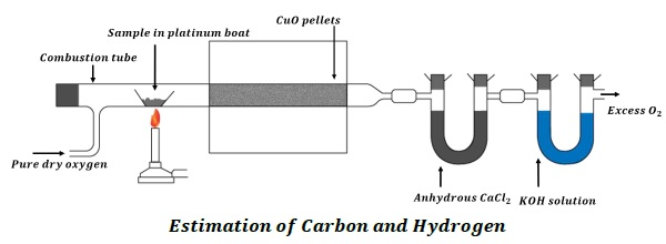 Quantitative Analysis  Carbon  Hydrogen