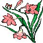 Beautiful Flowers Clipart 25