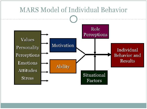 the role and effects of personality on individual leadership Effects of exercise motivation & personality the aim of this lesson is to understand personality and individual differences between people.