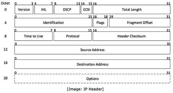 IP header includes many relevant information including Version Number ...