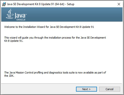 Java SE Development Kit 8 Next