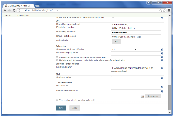 Configure Selenium Server